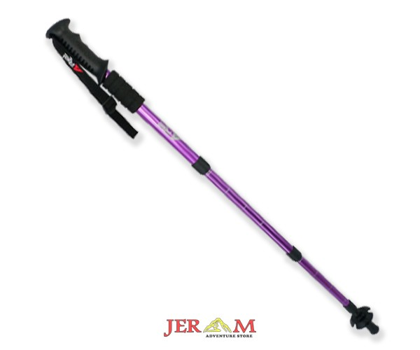 Trekking Pole Rei Outdoor Stick 3